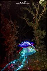 Things light (YHD Fotografia) Tags: longexposure light lightpainting painting exposure lp leds lighteffect lightart lightpaintinglongexposure yhdfotografia
