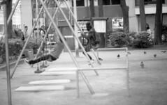 160504_NikomatFt2_036 (Matsui Hiroyuki) Tags: fujifilmneopan100acros nikonnikomatft2 nikonnikkorhauto85mmf18 epsongtx8203200dpi