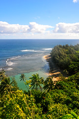 Should I head back to beach instead?? (Anders Magnusson) Tags: hawaii hike trail kauai kalalau napali kalalautrail nāpali andersmagnusson