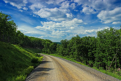 Sugarcamp Mountain (14) (Nicholas_T) Tags: road trees summer sky clouds pennsylvania cumulus creativecommons dirtroad gravelroad endlessmountains loyalsockstateforest lycomingcounty sugarcampmountain sugarcampmountainroad