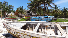 Dhows Everywhere, Vilanculos, Mozambique (dannymfoster) Tags: africa beach mozambique dhow mocambique vilankulo vilanculos