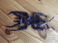 Origami Chiasognathus Grantii (Bart Davids) Tags: paper insect design origami pattern beetle darwin fold complex crease
