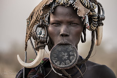 Mursi Tribe Woman with Lip Plate and Pig Fangs, Omo Valley, Ethiopia (Joel Santos - Photography) Tags: africa pig joel plate santos valley lip ethiopia tribe mursi fang omo