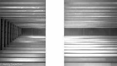 Symmetry (Henry Sauerbier) Tags: blackandwhite bw art monochrome architecture singapore bnw mbs marinabay archiporn marinabaysands mysingapore