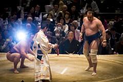 Sumo in Osaka-13 (Rodrigo Ramirez Photography) Tags: japan amazing traditional professional tournament osaka sumo yokozuna ozeki makuuchi hakuho sumotori sumotournament maegashira reikishi harumafuji topdivision