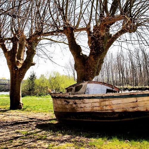 #boat #bateau #paysage #nature #insta #igersgironde #gironde