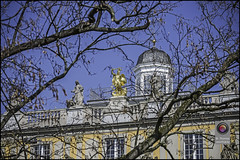 DSC_7668 Kopie (kurvenalbn) Tags: deutschland bonn pflanzen blumen nordrheinwestfalen frhling kirschbluete