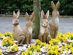 Easter Bunnies (yorkiemimi (away for a while)) Tags: flowers bunnies easter ostern deco