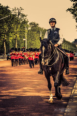 Troops of the Grenadier Guards in front of Buckingham Palace (tbnate) Tags: park horse london outside army nikon outdoor ceremony police queen buckinghampalace orchestra troops queensguard hermajesty grenadierguards changingtheguard d5100 nikond5100 tbnate