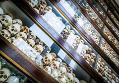 PPB_7247 (PeSoPhoto) Tags: skulls rouge nikon asia cambodia khmer killing pot xp bones fields ek dictator phnom massgraves penh pol dictatorship humanremains khmerrouge polpot 2016 massgrave atrocity choengek choeng d7100