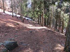 2016-032921 (bubbahop) Tags: switzerland hike locarno 2016 cardada europetrip33
