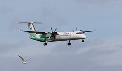 LN-RDY Dash 8, Aberdeen (wwshack) Tags: scotland aberdeen dash8 dyce abz wideroe aberdeenairport egpd lnrdy