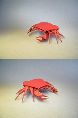 Cangrejo - Fernando Castellanos (Rui.Roda) Tags: origami crab fernando papiroflexia caranguejo cangrejo crabe castellanos papierfalten