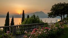 A room with a view (hjuengst) Tags: italien sunset italy panorama garden italia sonnenuntergang cypress garten lakegarda lagodigarda gardasee zypressen