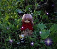 Kokoro and Magello's Plight #1 (Arthoniel) Tags: toy outside lights doll outdoor handmade ooak magic tan collection fairy fox figure limited mage hani kokoro needlefelt latidoll lati magello latiyellow masterofdragon bjdmballjointeddoll