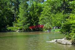 (Les_Snipez) Tags: gardens nc northcarolina duke dukegardens