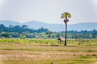 savannakhet - laos 11