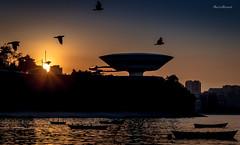 MAC - Niteri - Rio de Janeiro (mariohowat) Tags: niemeyer arquitetura riodejaneiro sunrise mac natureza alvorada amanhecer niteri nascerdosol museudeartecontempornea oscarniemeyerarquitetura