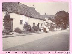 Mud Cottages Liangawsai Aberystwyth 1910 (Bury Gardener) Tags: uk blackandwhite bw wales vintage oldies 1900s