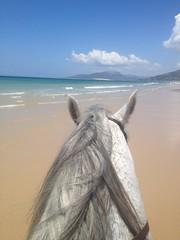 Jessica_Emmerich_Horsemanship_Andalusien_05 (jessica_emmerich) Tags: hotel natural jessica hurricane second andalusien spanien tarifa kurs horsemanship emmerich hippica