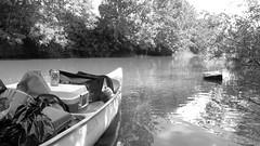 Long Tom river Oregon. (mace pdx) Tags: canoe life trip river longtom oregon water ways nona boats
