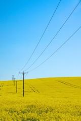 Lines......... (klythawk) Tags: blue black nature lines yellow spring bluesky olympus telephonepoles nottinghamshire omd rapeseed em1 eakring 1240mm klythawk