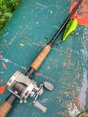 Strike pro buster jerk (marcleach51) Tags: fishing pike predator lure esox abugarcia jerkbait busterjerk