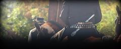 Alineados (Eduardo Amorim) Tags: horse southamerica argentina argentine criollo caballo cheval pferde cavallo cavalo gauchos pferd halter ayacucho pampa riendas apero gaucho cavall badana  faca amricadosul platera bozal gacho cabezada amriquedusud provinciadebuenosaires reins bastos  recado gachos  basto sudamrica suramrica amricadelsur sdamerika crioulo caballoscriollos criollos  pilchas buenosairesprovince cabeada facn pilchasgauchas recao pampaargentina americadelsud plateracriolla lombilho crioulos cavalocrioulo americameridionale caballocriollo rdeas eduardoamorim cavaloscrioulos fiador bual lomillo pampaargentino