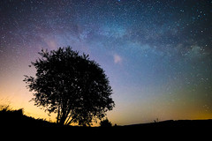 The Milky Way Galaxy (Photography Revamp) Tags: longexposure nightphotography night stars landscape poland midnight lightpollution nightexposure milkyway starynight milkway podkarpackievoivodeship