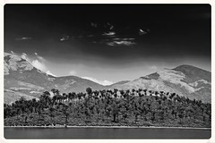 A Tonal View (The Spirit of the World) Tags: trees india mountains nature clouds view kerala hills simplicity vista tonal munnar southernindia