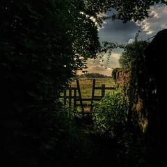 202/366 (scott.simpson99) Tags: ticknall derbyshire iphone6 square 366 england uk summer footpath scottsimpson walking hiking trees