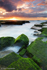 Green Rocks @ Turimetta (renatonovi1) Tags: green rocks sea beach ocean sunrise turimetta sydney nsw australia seascape landscape