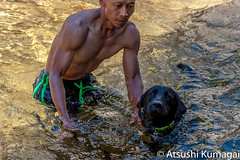 Swimming in frigid waters! (kumagai.atsushi) Tags: black lab swimming cold freezing refreshing nature mokelumne river current flowing