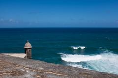 San Juan (- yt -) Tags: oldsanjuan puertorico sanjuan gss fujifilmx100t