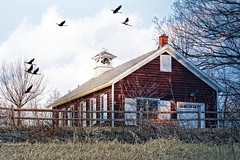 Little Red Schoolhouse (LotusMoon Photography) Tags: red nature photomanipulation photoshop geese center photomontage schoolhouse cookcounty sandhillcranes willowsprings forestpreserves