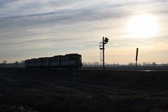 Io sto con il sole..... (Maurizio Zanella) Tags: italia tn trains railways pavia ferrovia treni aln6681117 torreberetti trenord aln6681066 r4577