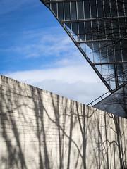 20150308-0012 (www.cjo.info) Tags: shadow plant building tree brick wall architecture scotland flora edinburgh unitedkingdom panasonic londonroad brickwork modernbuilding meadowbank meadowbankstadium sportsstadium geocity microfourthirds camera:make=olympusimagingcorp geostate geocountrys exif:make=olympusimagingcorp exif:focallength=25mm exif:aperture=ƒ50 m43mount panasonicleicadgsummilux25mmf14asph exif:lens=leicadgsummilux25f14 olympusomdem10 exif:isospeed=100 camera:model=em10 exif:model=em10 geo:lat=55956280555555 geo:lon=31598083333333