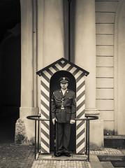 Wache (olipennell) Tags: people castle prague guard prag praha tschechischerepublik wache mensch katedrlasvvta veitsdom