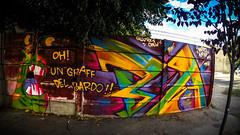 BA de Bardo (JotaCePe) Tags: argentina colors graffiti jcp bardo oro neuquen jotacepe