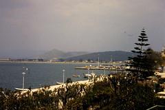 Grce, vacances de Pques 1987. Nauplie, baie avec araucaria (Marie-Hlne Cingal) Tags: 1987 greece grce  hells  diaponumrise
