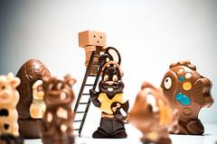 Danbo et les chocolats de Paques2 (Marc Egensperger) Tags: easter chocolat pques danbo danboard