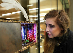 Student looking at her colleague's artwork at 'Parallels' show in Lexicon, Dun Laoghaire (Skyroad) Tags: