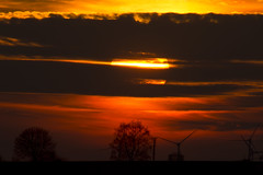 The Sun goes down (Nature_77) Tags: silhouette landscape abend sonnenuntergang wolken tele landschaft sonne bäume schatten pirmasens windkrafträder nikond5200