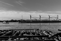 Crescent Park, New Orleans (enigmaarts) Tags: bridge water pier boat ship westbank neworleans wharf mississippiriver crescentcityconnection crescentpark neworleansskyline enigmaartsphotography enigmaartscom beckyplexco