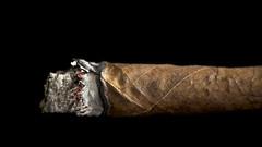 Just leaves: second life (BribbroPhoto) Tags: macro smoke cigar hmm fumo toscano sigaro justleaves macromondays canoneos6d canonef100mmf28lmacroisusm manipulatedleaves