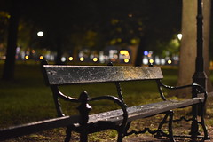 Night time in the park (jacques_teller) Tags: park urban green public garden bench nikon dof nightscape nightshot bokeh poland krakow greenbelt krakw planty greenspace cracovie pologne nikonian nikonistas intimiste d7200