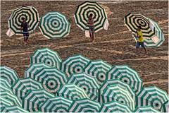 Fin de journe sur la plage (leonhucorne) Tags: plage merdunord parasols koksijde colorsinourworld trophyofexcellence