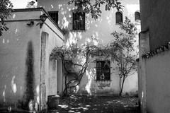 Indrets oblidats / Forgotten places (irispuag) Tags: white black blanco mar casa negro bn forgotten catalunya forgot blanc lugar antiguo negre tossa olvidado lloc indret oblidat