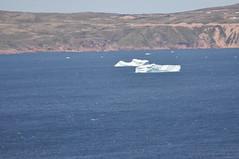 A far shot of the icebergs (shankar s.) Tags: seascape canada nfl iceberg floatingice coastalroad coastaltown localhistory baydeverde oceanroad icemountain coastaldrive coastalscenery easterncanada newfoundlandandlabrador icechunks baccalieutrail explorertrail breakingiceberg