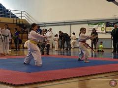 stefanou_15_5_2016_knockdown_25